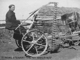 Elinore Pruitt Stewart
